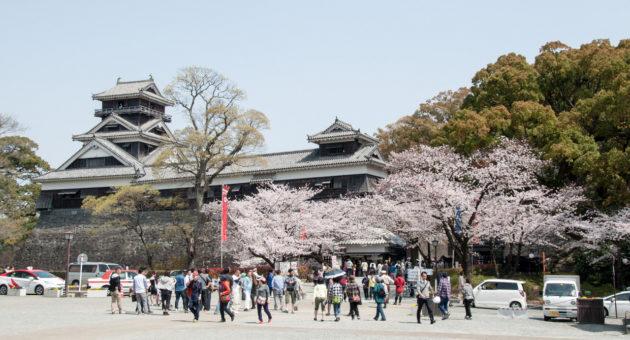もうすぐ春到来!熊本市内のお出かけ情報!