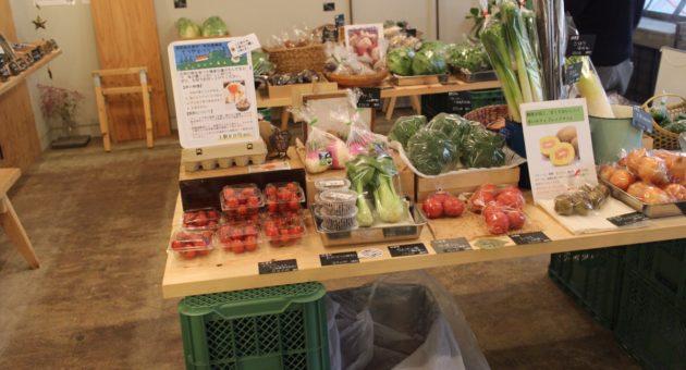 こだわりの農家さん達が作る、収穫されたばかりの野菜たちを販売する「おやまのやおや」
