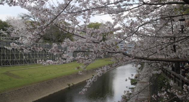 熊本城・行幸坂(みゆきざか)